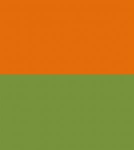 Saffron Thinking Green Living by Dileep Kulkarni
